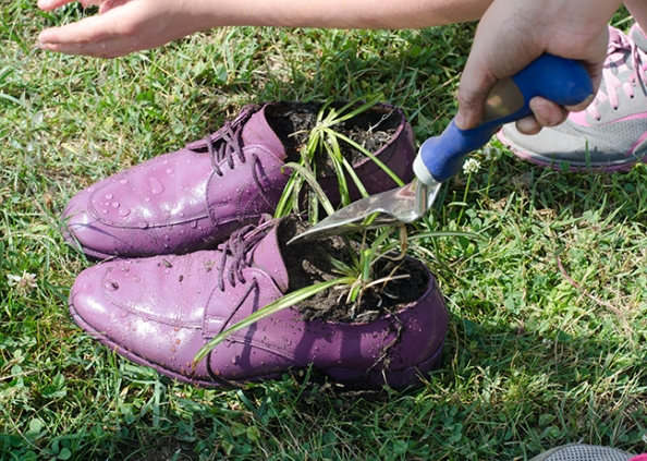 We couldn't find boots so we laid his shoes with soil and planted two spider plants in them.
